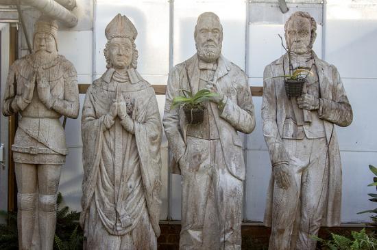 Durham University Botanic Garden: Green Bishops