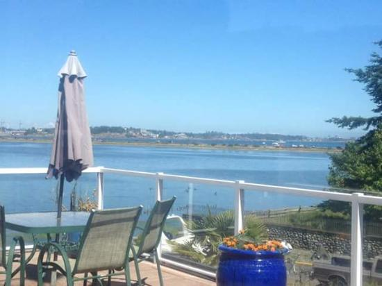 Birds of a Feather Ocean Lagoon Bed & Breakfast & Vacation Rental: The View from suite 2