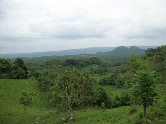 Saint James Parish, Jamaïque : The lush beautiful countryside