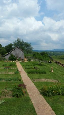 Heavens Holler B&B: Looking down at the bar and garden