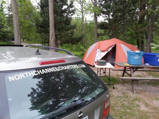Craigleith Provincial Park : Car camping. Huge site!