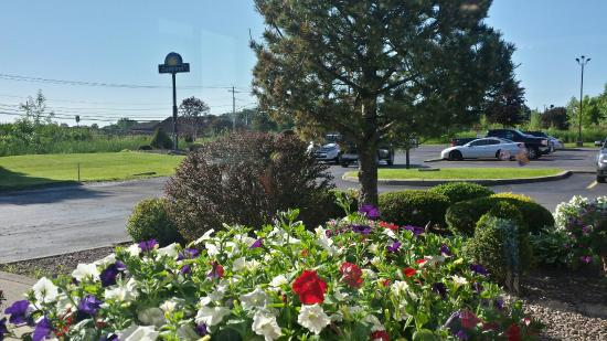 Room Smells the room smells time to up date - picture of days inn canastota