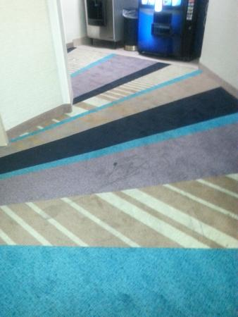 The Norman Hotel: lots of carpet staining