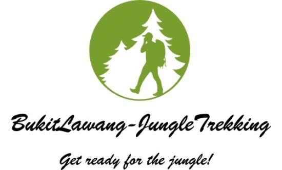 Bukit Lawang, Indonesia: GET READY FO RTHE JUNGLE!
