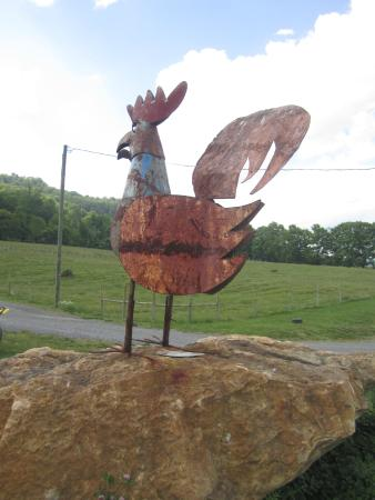 Watts Roost Vineyard: Tin Rooster