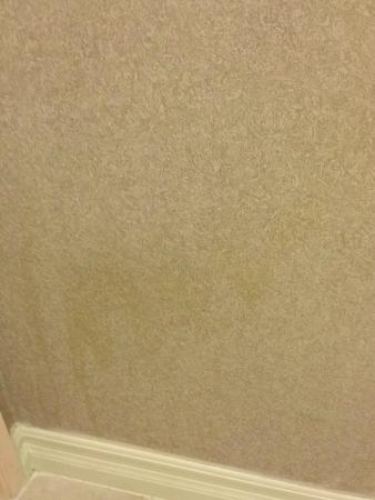 Anaheim Carriage Inn: Blood stains going down wall