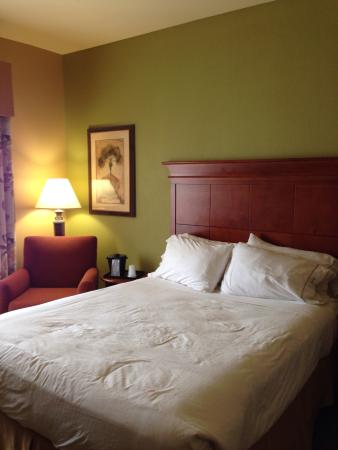 Foto de Holiday Inn Hotel Express & Suites West Hurst