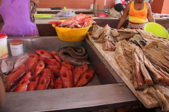 Mercado de Peixe: Peixe fresco e nao só