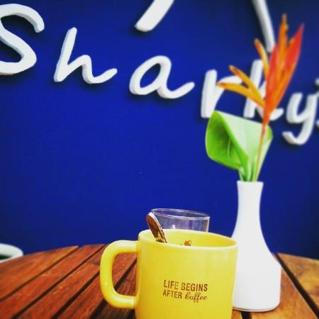 Sharky's Restaurant & Grill
