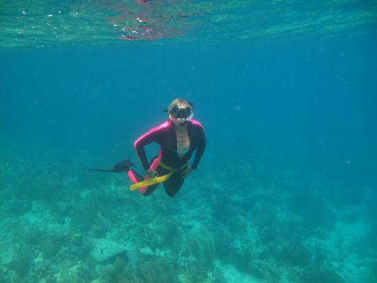 Wayward Sailor: Capt Phil took some good photos of everyone snorkeling.