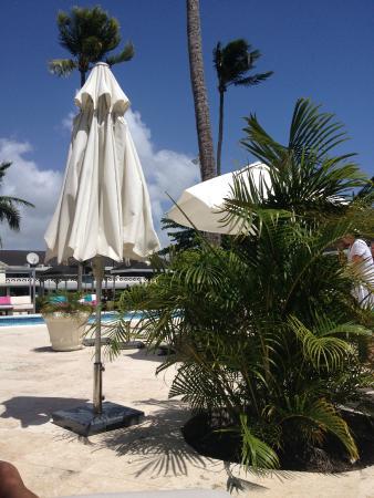 Holetown, Barbados: The pool .