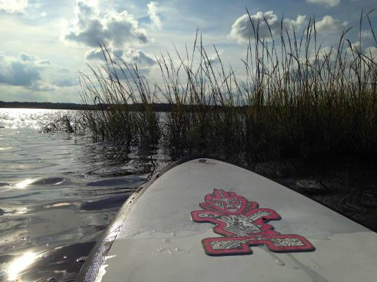 Dutton Island Preserve: December on the water. I love living in Florida!