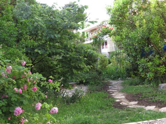 Les Arbousiers: Vue du jardin (au printemps)