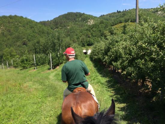 Vicchio, Italië: photo1.jpg