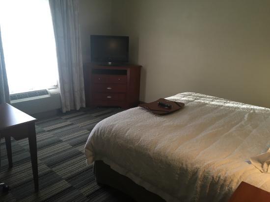 Hampton Inn & Suites Colorado Springs/I-25 South: Basic room