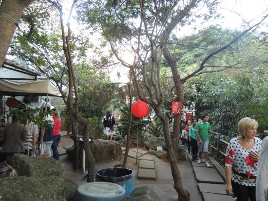 mini jardim oriental:Jardim Oriental: O jardim é praticamente só esse espaço!