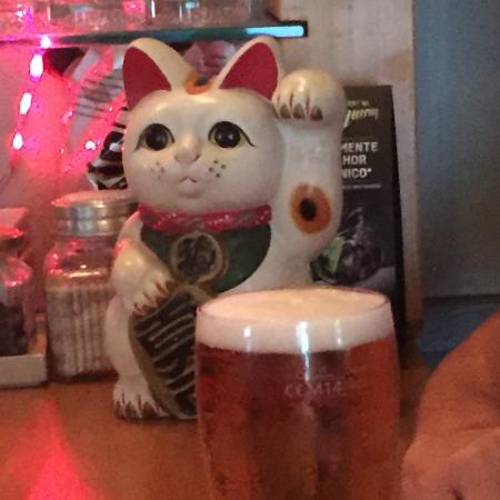 Aventura Bar: Ask about the lucky cat ....