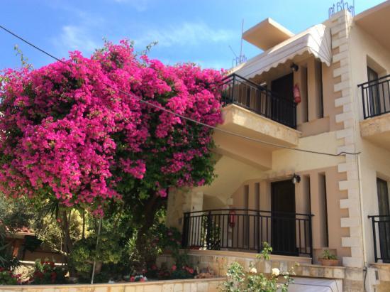 Iliana Apartments
