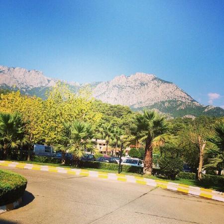 Majesty Club La Mer : Очень хороший отель и территория вокруг него!