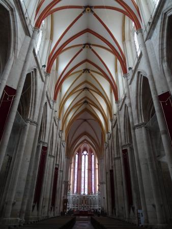 Cathedrale et cloitre Saint Etienne : Vue intérieure