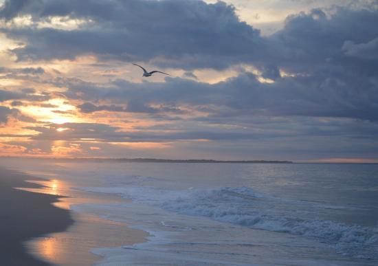 Poverty Beach, Cape May, NJ at sunrise ©HeatherBodkin 2015