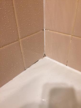 Bathroom Fixtures Doral mold/mildew throughout shower. old fixtures - picture of doral