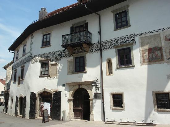 Шкофья-Лока, Словения: La casa