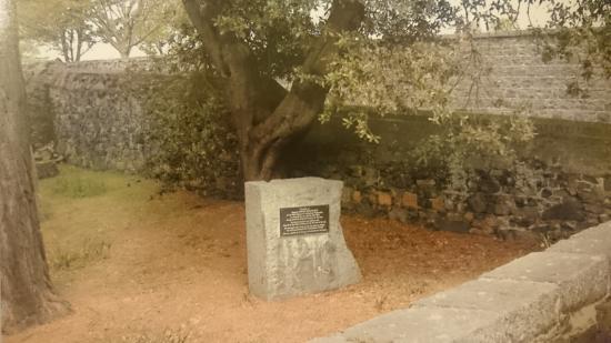 Sargeant Samuel Macdonald's Grave
