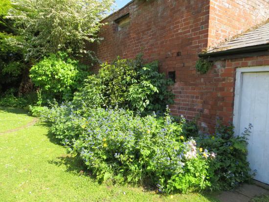 Lugwardine, UK: White Coach House back garden