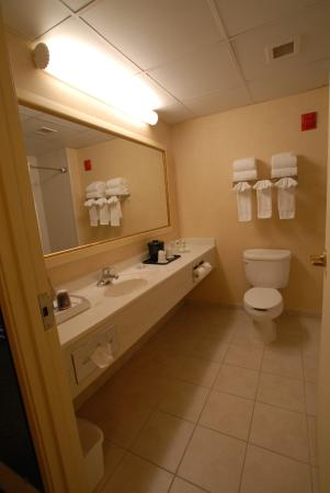 Country Inn & Suites By Carlson, Newark Airport: Guest Room Bathroom