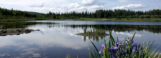 Wander Lake at Wedgewood Resort Wildlife Sanctuary Fairbanks Alaska ...