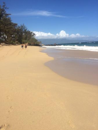 Paia, Havai: photo1.jpg