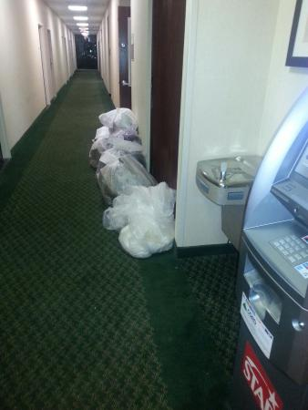 Fairfield Inn Philadelphia Great Valley/Exton: Lobby off of main hallway.  Hotel trash.  This is not from a patron.