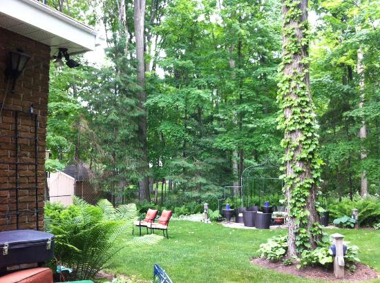 Les Diplomates B&B: Half of back yard space