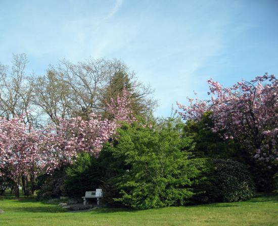 Sequim Pioneer Memorial Park