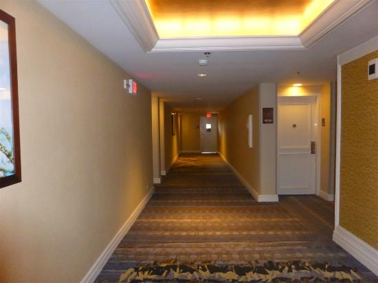 Hilton Hawaiian Village Rooms Suites Photo Gallery: Ali'i Tower Room Numbers For 14th Floor...