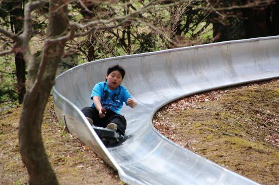 Matsumoto Alps Park : ドリームコースター