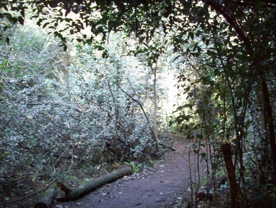 Reserva Natural Urbana
