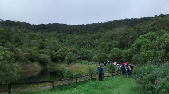 Encenillos Biological Reserve