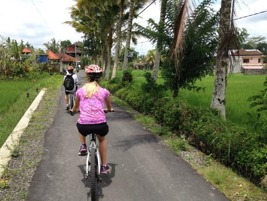 ‪Ubud Bali Bicycle Tours - Private Tours‬
