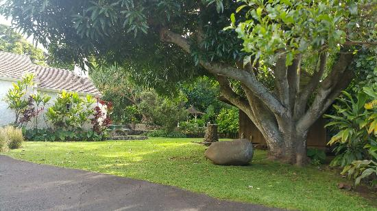 Hale Hoʻikeʻike at the Bailey House: Bailey House Museum