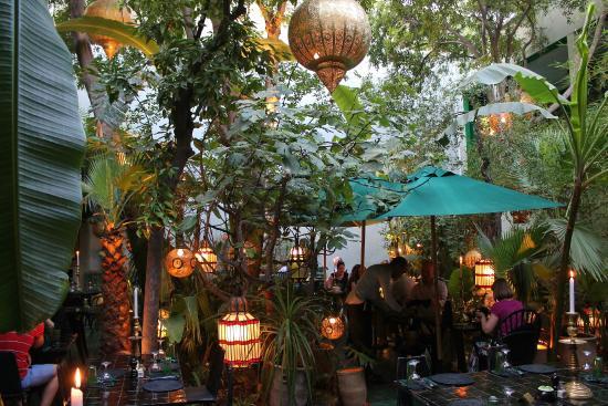 le jardin garden - Jardin Marrakech