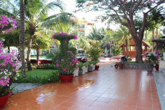 Sunny Beach Resort : Территория отеля