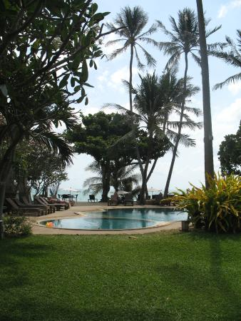 """Aloha Resort : Лежаки под пальмами для""""бледнолицых"""""""