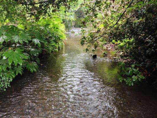 Ochiai River and Minamisawa Springs