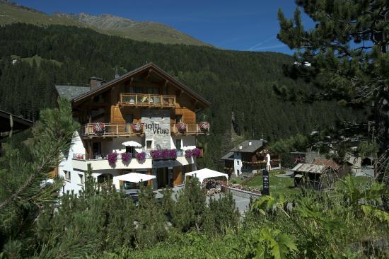 Hotel Vedig