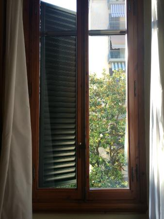 Hotel Bologna: View from the room