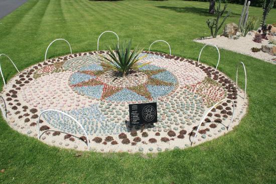 Aiuola piante grasse picture of national botanic gardens for Aiuola piante grasse