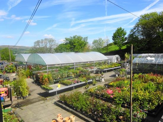 Park Farm Shop and Tea Rooms: Garden Centre