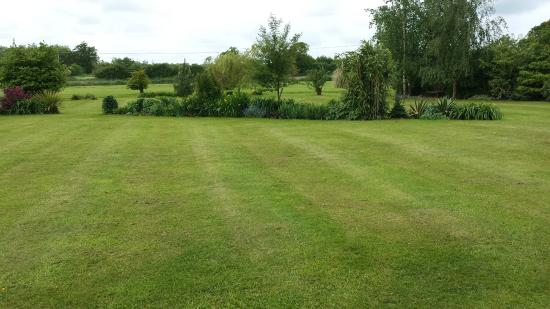 Hall Park Bed & Breakfast: This is the view from the Garden Room.